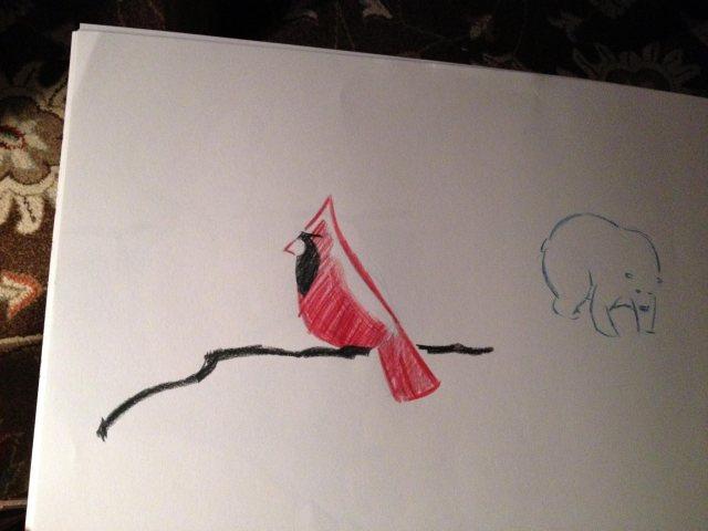 Cardinalbear