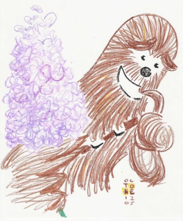 Chewbacca-Lilacs